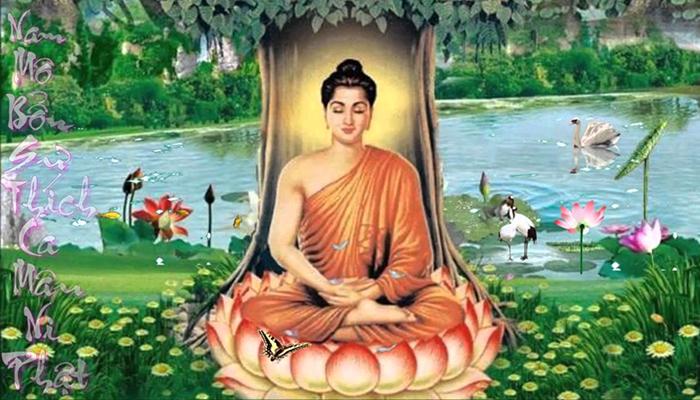 Đại Nhật Như Lai – Vị Phật bản mệnh cho tuổi Mùi, tuổi Thân
