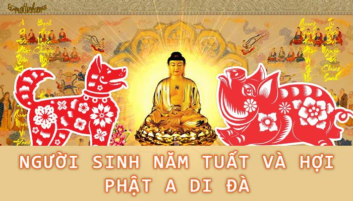 Phật A Di Đà - Phật bản mệnh của tuổi Tuất và Hợi